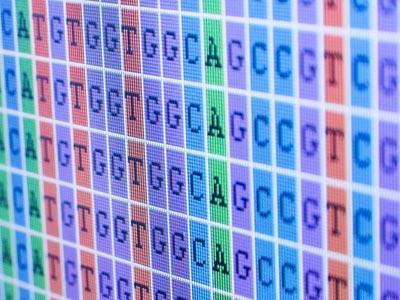 Что такое геном человека: расшифровка