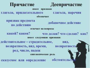 Самостоятельные части речи