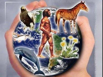 Теория возникновения жизни на Земле