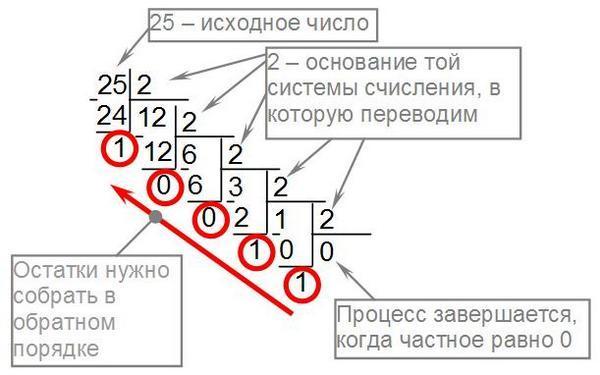 Применение правил в математике: двоичная система счисления – перевод чисел