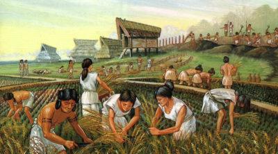 Что такое традиционная экономическая система – это: признаки и характеристика