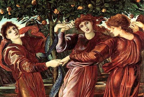 Яблоки Гесперид