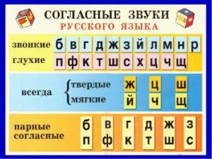 Чем отличаются звуки от букв